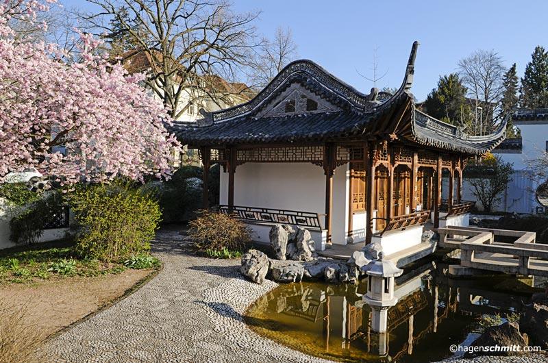 chinagarten stuttgart impressionen startseite design bilder. Black Bedroom Furniture Sets. Home Design Ideas
